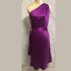 Banana Republic Women 100% Silk Dress One Shoulder